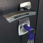 Дверь Премиум №01
