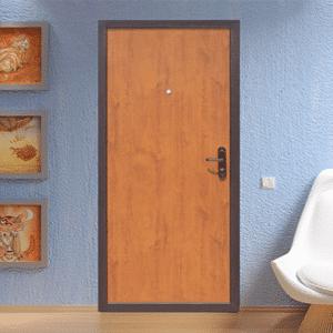 Дверь эконом класса №21