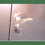 Порошковое напыление дверь №15