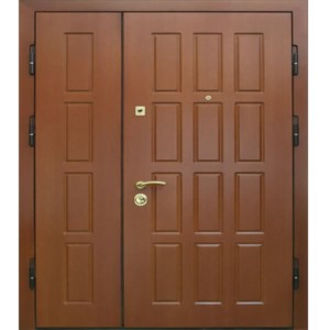 Дверь Тамбурная №05